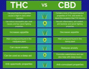 cbd vs thc 2
