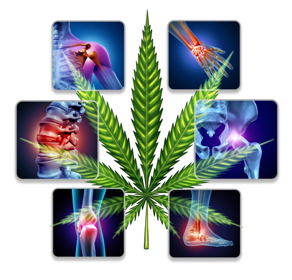 what is the best cbd oil for pain