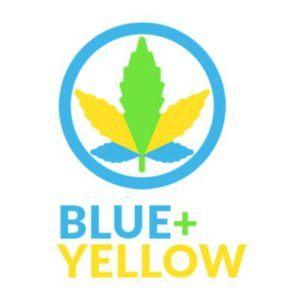 blueplusyellow review