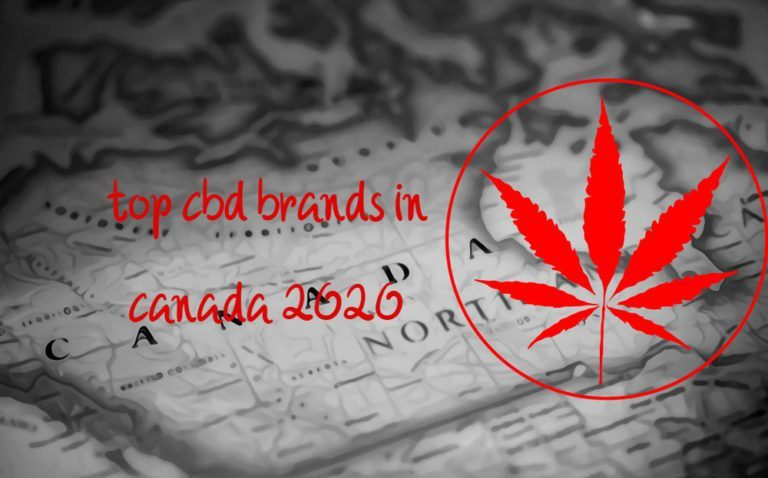 where to buy the best cbd oil in canada