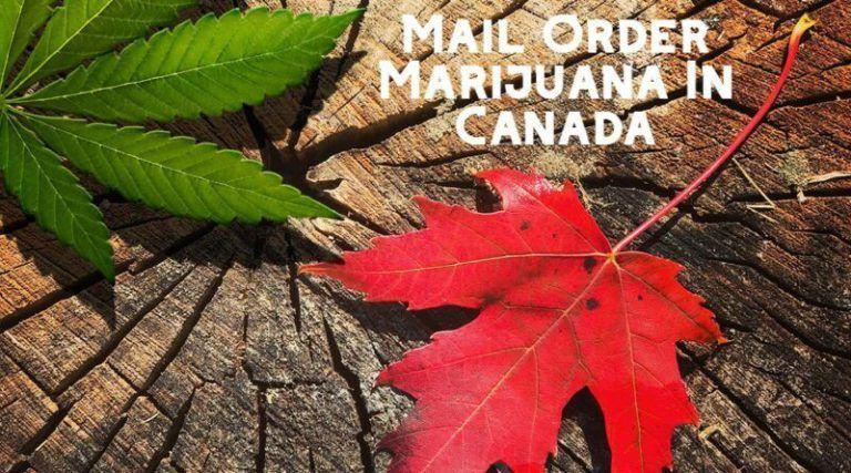 mail order marijuana in canada