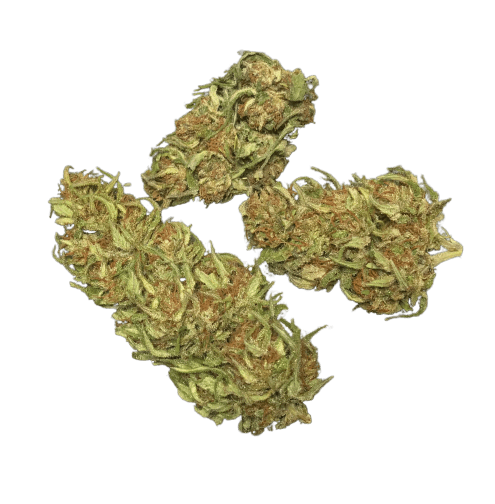 cascadia blooms cbd hemp flower