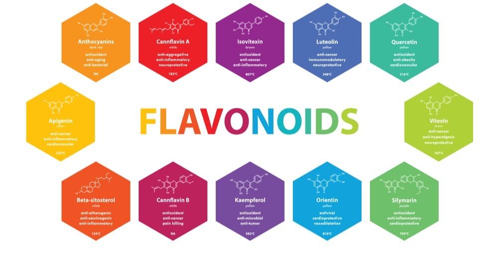 flavonoids in cbd oil