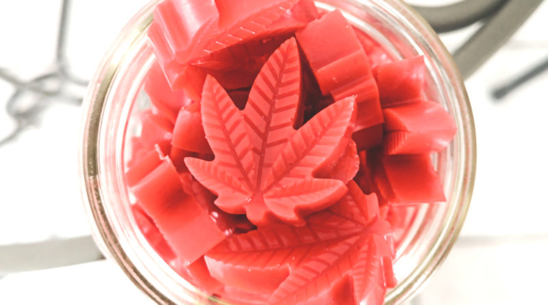 where to buy the best cbd gummies in canada